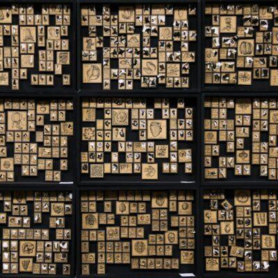 Музей чепухи, из 16 коробок, каждая 30х40 см, бумага, тушь, энтомологические булавки, 2020-2021